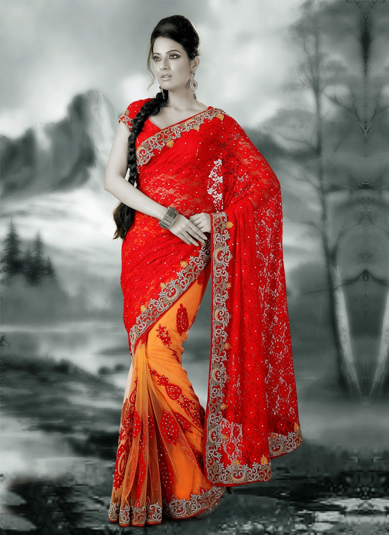 Attractive Chicken Work Net Half N Half Saree
