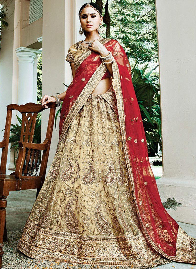 Classy Beige and Red Net A Line Lehenga Choli For Bridal
