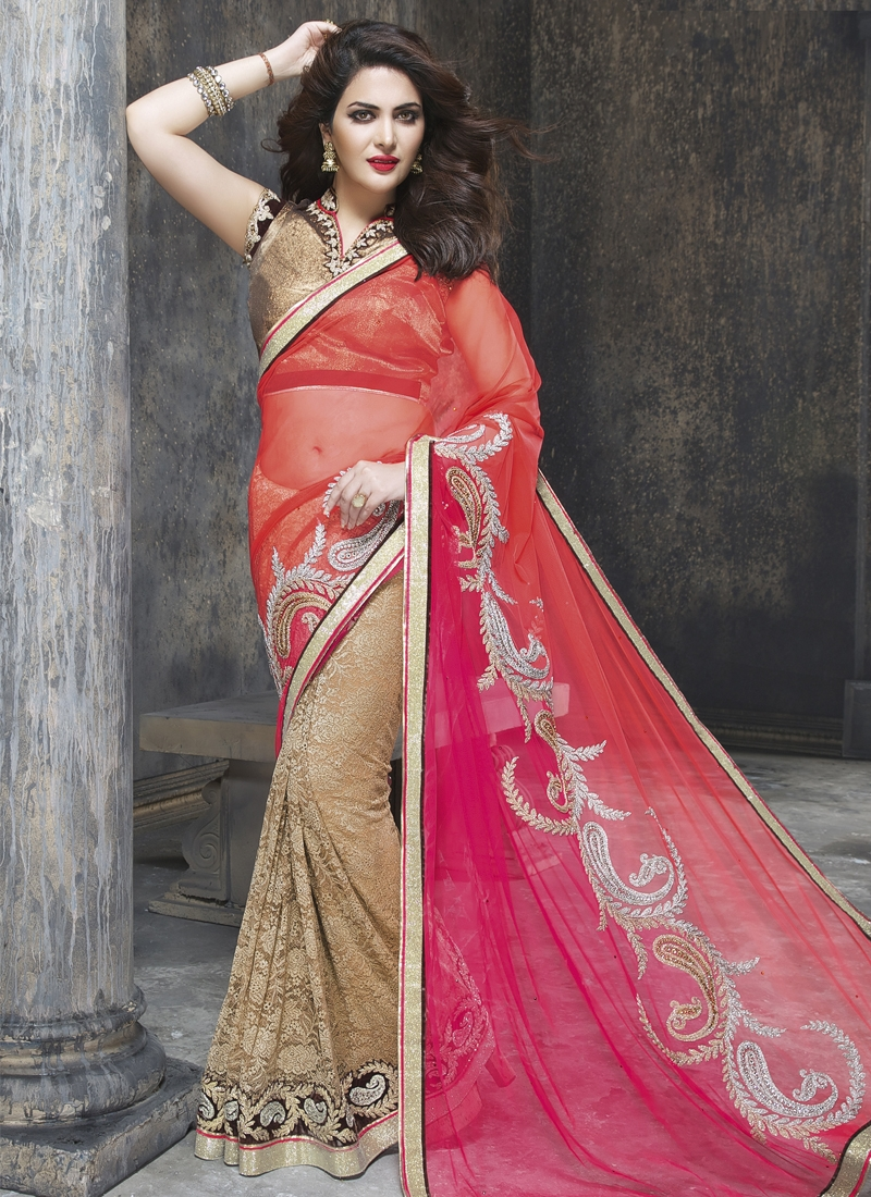 Graceful Patch And Lace Work Net Half N Half Designer Saree