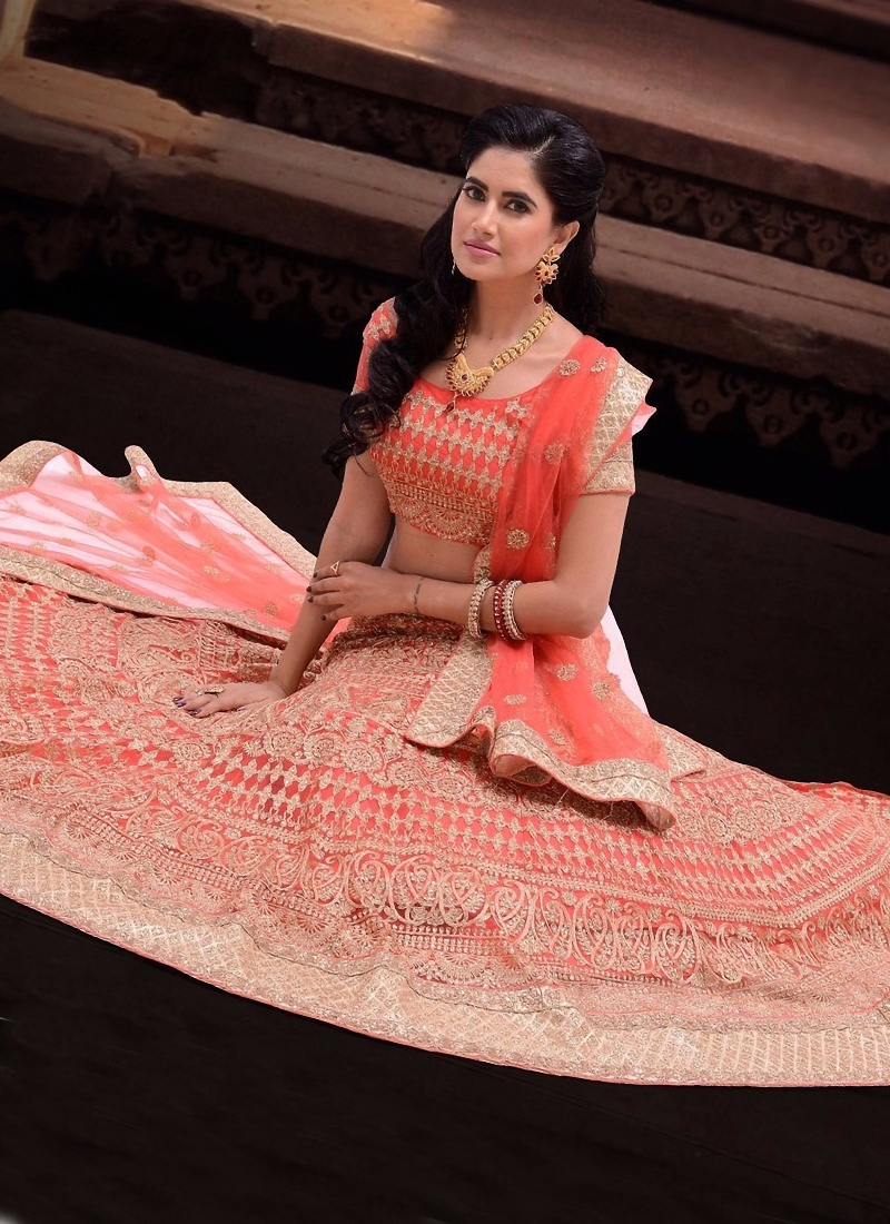 Paramount Embroidery Work Bridal Lehenga Choli