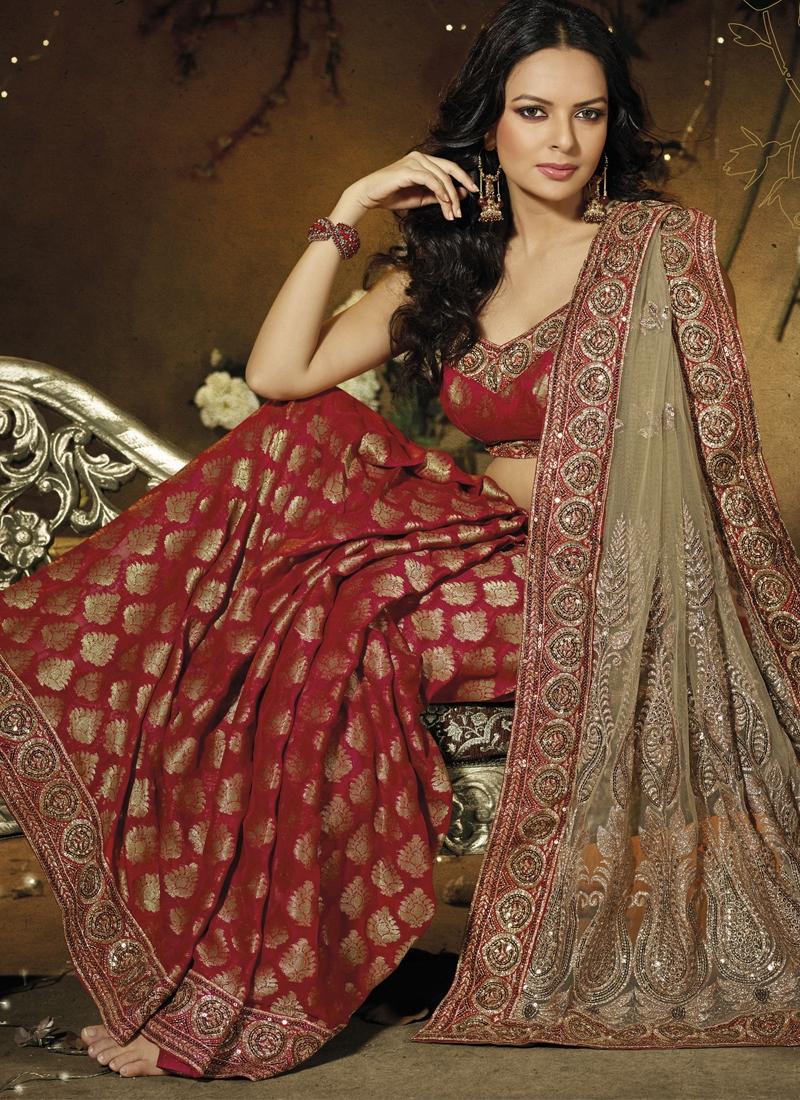 Ravishing Embroidered Half N Half Saree