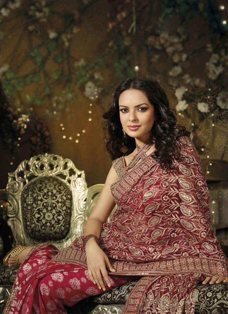 Tantalizing Embroidered Net Casual Saree